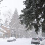 voiture neige